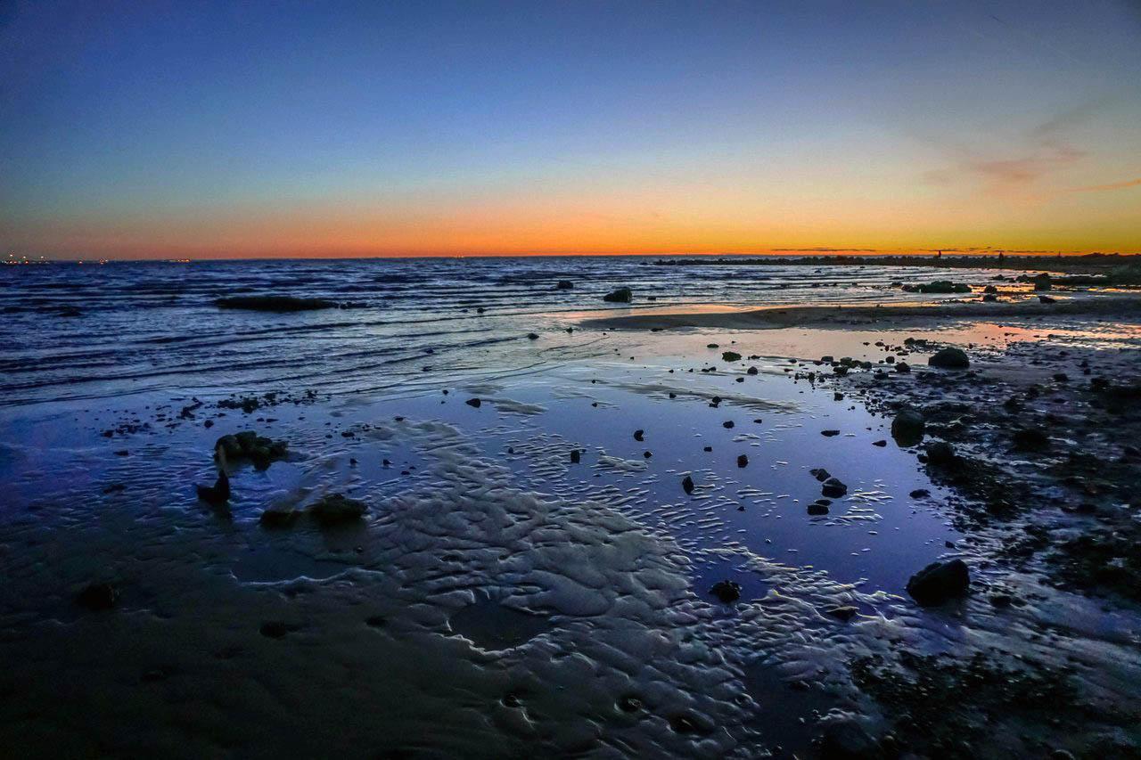 Ландшафт Невской дельты