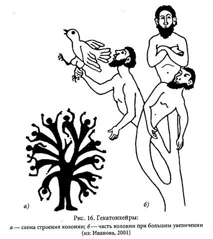 гекатонхейры